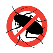 karaböcek  ilaçlama